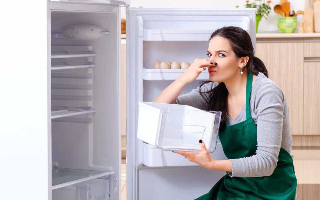 The Battle Against Refrigerator Odors