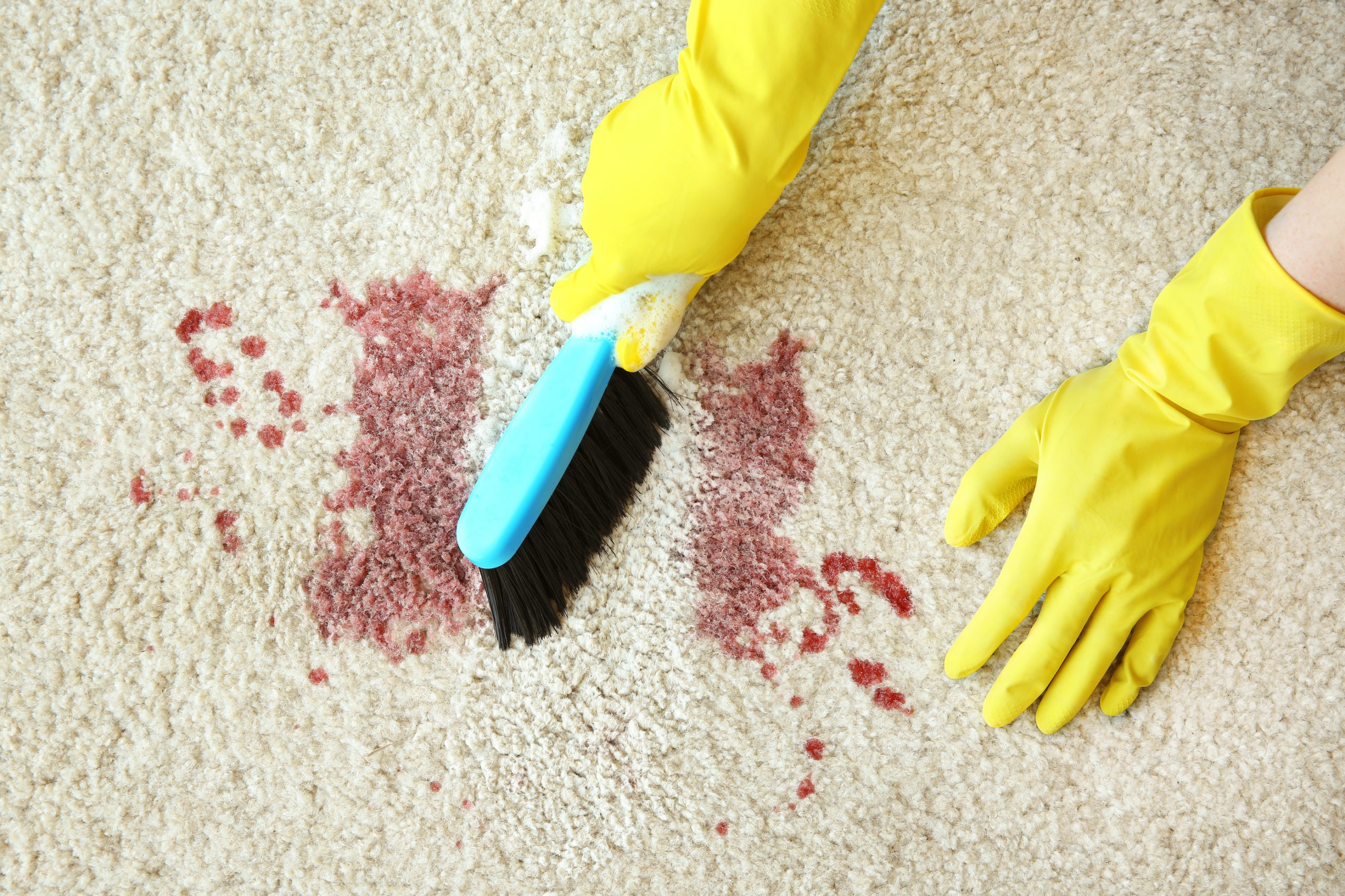 carpet blood stains, get blood out of carpet, bloody spot